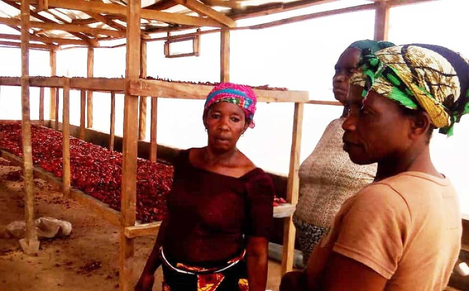 SUPPORT WEP IN BUILDING EFFICIENT TECHNOLOGY FOR WOMEN'S ECONOMIC EMPOWERMENT