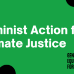 FEMINIST CLIMATE SOLUTIONS ARE EVERYWHERE...